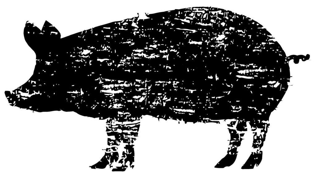 From Nose to Tail: Fleisch nachhaltig konsumieren.